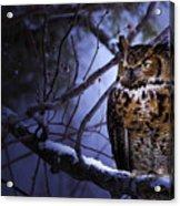 Great Horned Acrylic Print