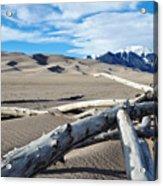 Great Sand Dunes National Park Driftwood Landscape Acrylic Print