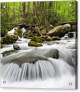 Great Smoky Mountain Roaring Fork Spring Cascade Acrylic Print by Mark VanDyke