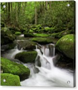 Great Smoky Mountains Roaring Fork Acrylic Print