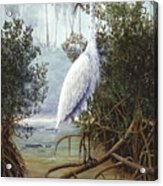 Great White Heron Acrylic Print by Kevin Brant