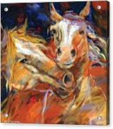 Grecos Horses Acrylic Print