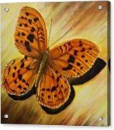 Greek Butterfly Acrylic Print