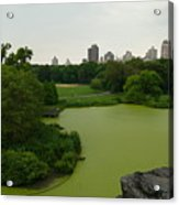 Green And Gray In Central Park Acrylic Print