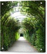 Green Arbor Of Mirabell Garden Acrylic Print