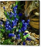 Green Blue And Burlap Acrylic Print