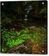 Green Cascade Acrylic Print