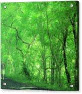 Green Creeper Acrylic Print
