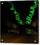 Green Curlicues Acrylic Print