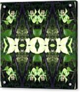 Green Dogwood Acrylic Print
