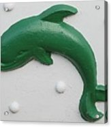 Green Dolphin Acrylic Print