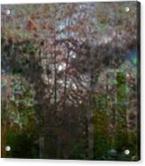 Green Eyes' Reflections Acrylic Print