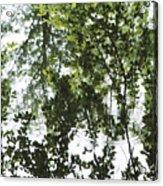 Green Fantasy Acrylic Print