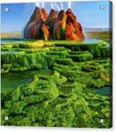 Green Fly Geyser Acrylic Print