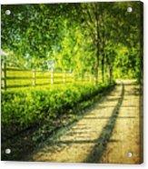Green Gallop Acrylic Print