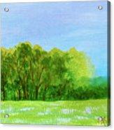 Peaceful Summer  Acrylic Print