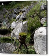 Green In Rock Garden Acrylic Print