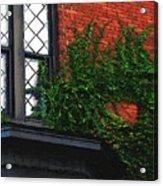 Green Ivy Garnet Brick Acrylic Print