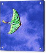 Green Kite Acrylic Print