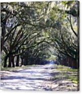 Green Lane Acrylic Print