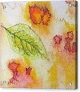 Green Leaf Of Fall Acrylic Print