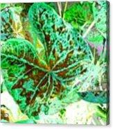 Green Leafmania 1 Acrylic Print