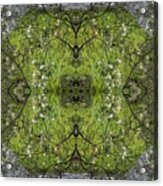 Green Mandala Acrylic Print