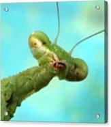 Green Martian Acrylic Print