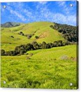 Green Meadow Santa Ynez Valley Ca Acrylic Print