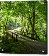 Green Nature Bridge Acrylic Print