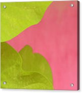 Green On Pink 1 Acrylic Print