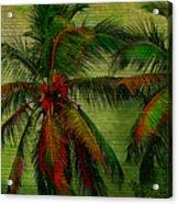 Green Palms Acrylic Print