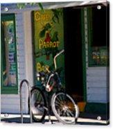 Green Parrot Bar Key West Acrylic Print by Susanne Van Hulst