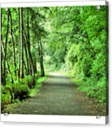 Green Path Acrylic Print by J D Banks