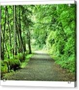 Green Path Acrylic Print