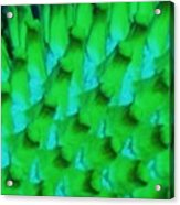 Green Pattern Abstract Acrylic Print
