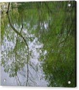 Green Peace - Trees Reflection Acrylic Print