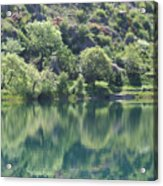 Green Reflection Acrylic Print