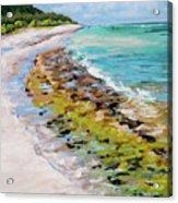 Green Sandbar Acrylic Print