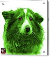 Green Shetland Sheepdog Dog Art 9973 - Wb Acrylic Print