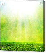 Green Spring Grass Against Natural Nature Blur Acrylic Print
