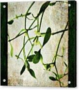 Green Tales  Acrylic Print