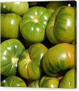 Green Tomatoes Acrylic Print by Frank Tschakert