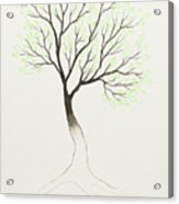 Green Tree Acrylic Print