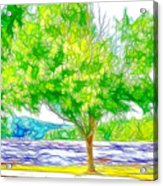 Green Trees By The Water 3 Acrylic Print