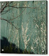 Green Wall Abstract Acrylic Print