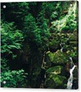 Green Waterfall Acrylic Print
