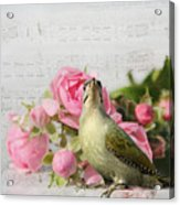 Green Woodpecker Stilllife Acrylic Print