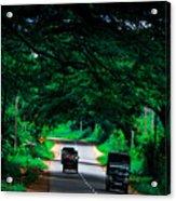 Greenery Acrylic Print