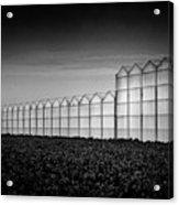 Greenhouse Acrylic Print